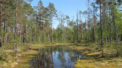 lauhanvuori national park wikiwand