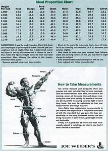 Joe Weider Ideal Proportion Chart  Free E