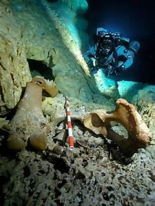 Titanic Pictures Underwater Human Remains | titanic