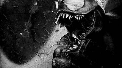 Venom Cool Wallpapers Games Computer Monochrome Backgrounds