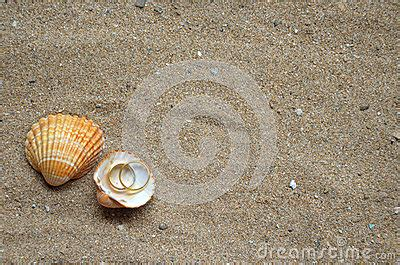 Seashells And Wedding Rings On The Sand Stock Photo. Wide Band Rings. Pisces Wedding Rings. Point Wedding Rings. Country Wedding Rings. Thumb Engagement Rings. Whale Rings. Recent Engagement Engagement Rings. Lightning Rings