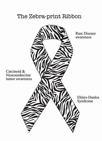 Ribbon Zebra Cancer Rare Disease Neuroendocrine Awareness