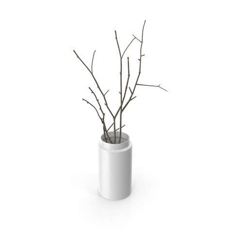 Vase With Branches by Vase With Branches Png Images Psds For