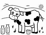 Cow Coloring Milk Cows Printable Cartoon Dairy Drawing Colouring Cattle Produce Healthy Pretty Looking Moo Says Getcolorings Getdrawings Alphabet Clipartmag sketch template