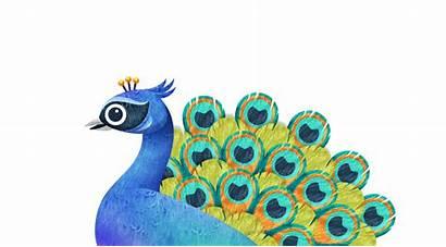 Ella Schools Peacock Access Materials Resources Login