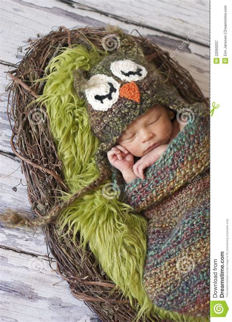 newborn boy  owl hat royalty  stock photography