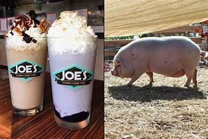 Drink Milkshakes At Joes Steaks Help Save Milkshake The