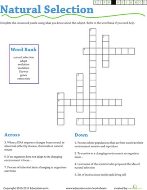 Life Science Crossword Natural Selection  Worksheet Educationcom