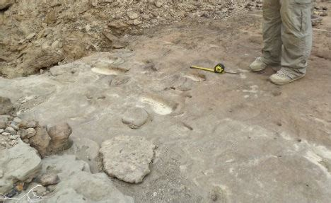 Possible Homo Erectus Footprints Found In East Africa