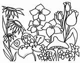 Coloring Garden Pages Flower Printable Flowers Spring Sheets Butterfly sketch template
