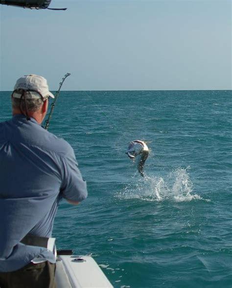 keys florida fishing marathon fish report tarpon middle
