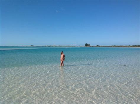 location chambre toulouse playa paradiso photo de sol pelicano cayo largo