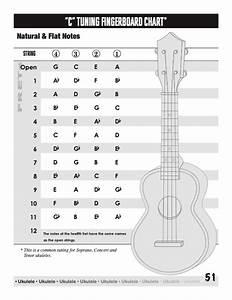 Learning Ukulele With Curt  U2022 A Guide To Ukulele Chords