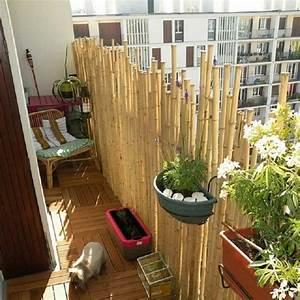 bambus als balkon sichtschutz ideen mit pflanzen matten With französischer balkon mit garten sichtschutz ideen