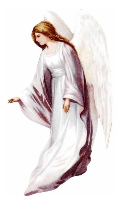 Angel Christian Christianity Transparent Background Pixabay Illustration