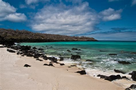 Galapagos Islands Ecuador Stephen L Tabone Nature
