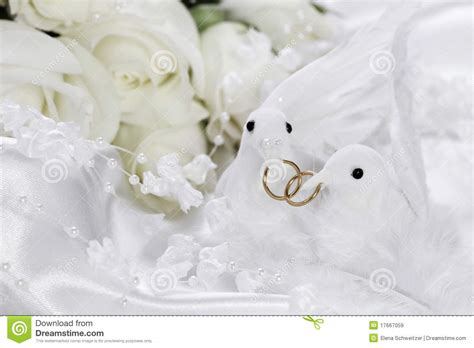 White Doves With Wedding Rings Stock Image