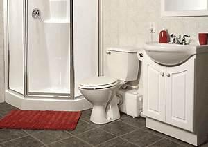 Saniflo news release for Bathroom pumps for basements