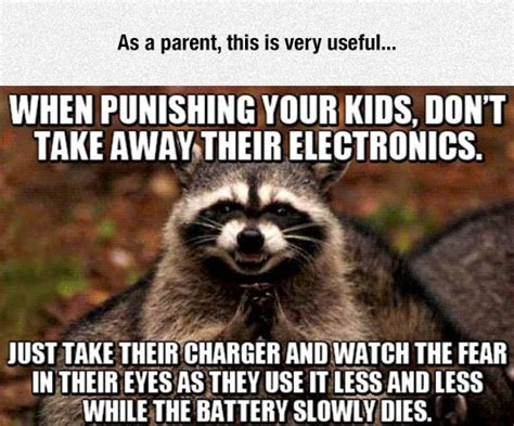 Funny Raccoon Meme - ultimate parenting
