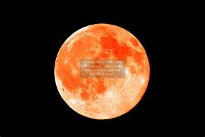 Orange Moon Pictures to Pin on Pinterest - PinsDaddy