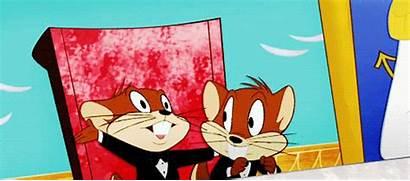 Looney Tosh Tunes Gay Mac Tomstar Svtfoe