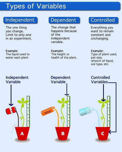 description of independent variable, dependent variable ...