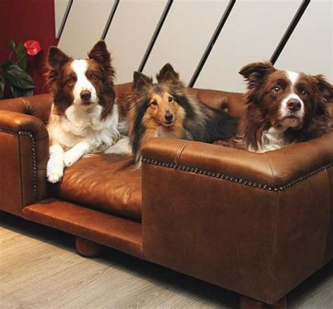 pet crate sandringham luxury leather bed leather