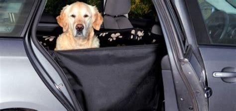 comment attacher siege auto attacher chien en voiture taupier sur la