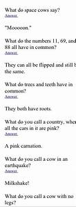 Tricky Riddles For Adults Am I Crazy Enough Pinterest