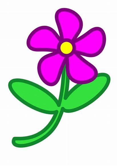Flower Clip Clipart Flowers Purple Cliparts Hibiscus