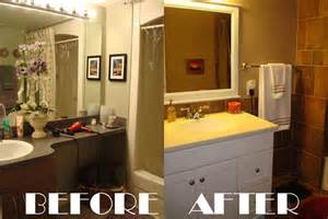 Mobile Home Bathroom Remodel Before and After