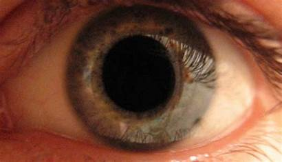 Flicker Test Pwm Eye Strain Why Monitor