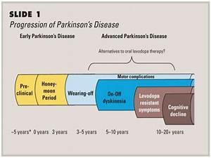 Parkinson's Disease Updates (Neurology)