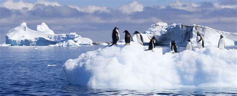 Antarctica Cruise: Luxury Antarctica Expedition 2018 ...