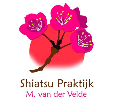 Shiatsu massage friesland