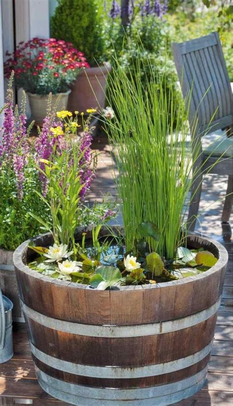 Miniteich Ideal Fuer Garten Terrasse Und Balkon by Wasserlilien Und Wasserminze Im Fass Aus Holz Garten
