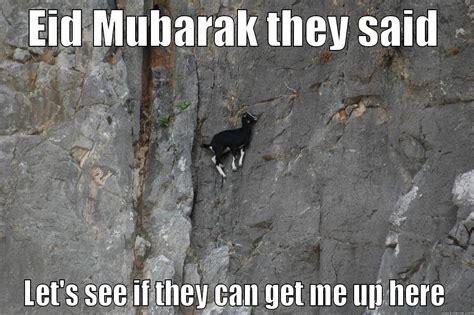 Eid Mubarak Meme - qurbani goat quickmeme