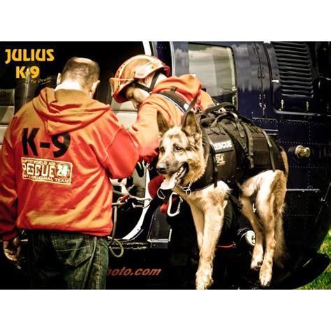 extra large dog carrier harness julius  uk