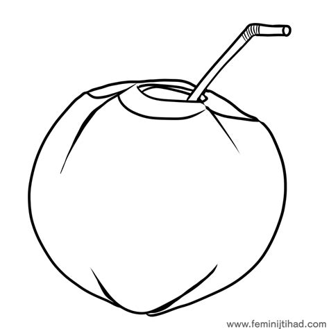 coloring coconut coconut coloring pages printable coloring pages for