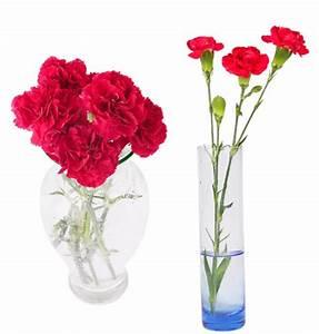 Grand Vase Transparent : fleur dans vase transparent fleurs dans vase vase of flowers pinterest dan free photo tulips ~ Teatrodelosmanantiales.com Idées de Décoration