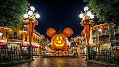 Disneyland Desktop