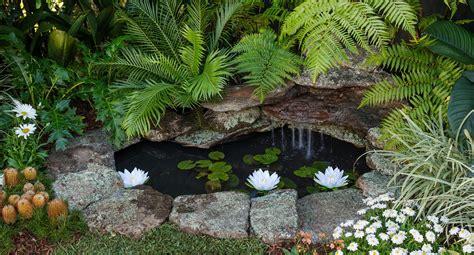 build  stunning  serene backyard pond  homes