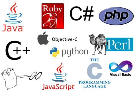Top Programming Languages Top Programming Languages In The Flickr