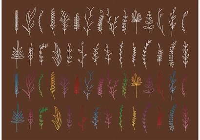 Boho Plant Vectors Floral Graphics Stil Mandala