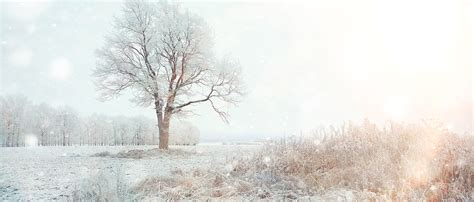 Background Images Snow by Snow Background Snow Winter Background Image For
