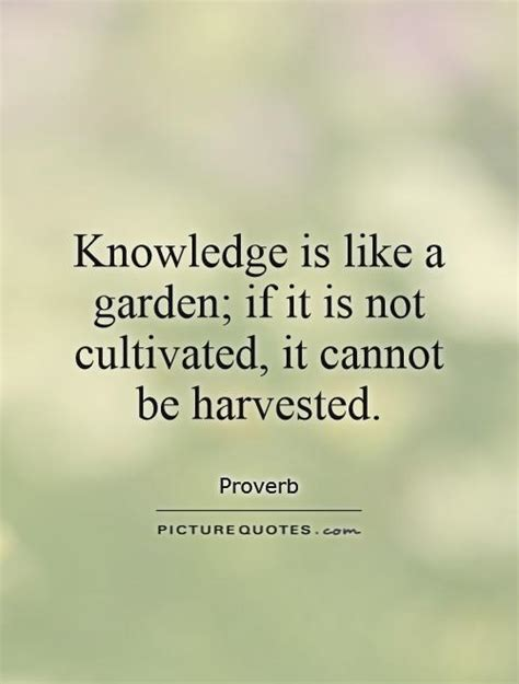 Quotes About Knowledge 65 Best Knowledge Quotes And Sayings