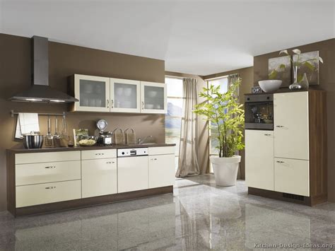 Painted Kitchen Cabinet Color Ideas - white walls and brown kitchen cabinets ideas