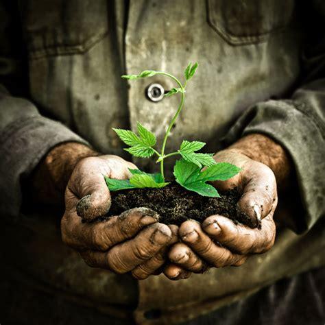 composting guru    compost planet natural