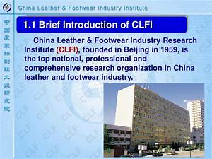 Sustainable Development of China Leather Industry