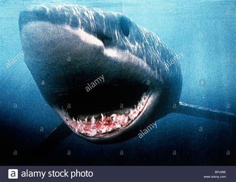 Megalodon Images Shark Shark Attack 3 Megalodon 2002 Stock Photo